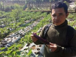 Ulus Primawan, petani dari Lembang, Jawa Barat menerima penghargaan.