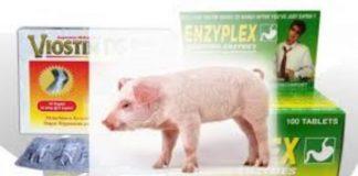 iostin DS dan Enzyplex yang dilarang beredar oleh Badan POM karena mengandung DNA babi