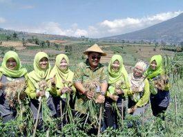 Kementerian Pertanian (Kementan) Prihasto Setyanto