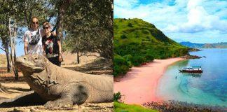 Kementerian Pariwisata akan mengembangkan ekosistem yang berada di sekitar destinasi Taman Nasional Komodo dan Labuan Bajo.