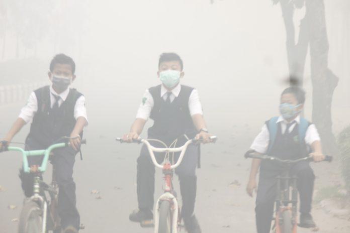 kabut-asap-masih-pekat-pemkab-kotim-siapkan-tempat-evakuasi