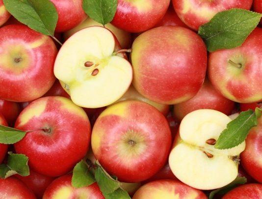 Waspada!! Makan Biji Apel Bisa Keracunan Sianida.