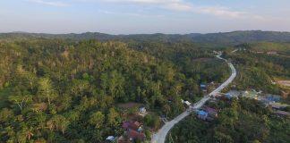 Harga Tanah di Penajam Paser Utara Meroket Imbas Ibu Kota Baru.