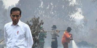 Presiden Joko Widodo saat meninjau lokasi karhutla di Merbabu, Riau.