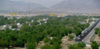 Arab Saudi Hijaukan Padang Pasir, Pertanda Apakah?