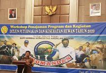 Menteri Pertanian Syahrul Yasin Limpo (Mentan SYL).