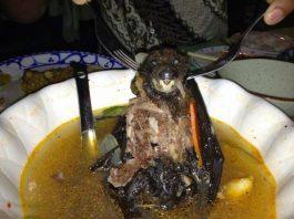 Sup kelelawar, sebuah makanan populer di Wuhan China.