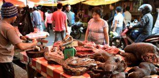 pasar ekstrim Kota Tomohon, Sulawesi Utara.