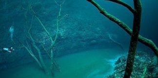 Fenomena Sungai Bawah Laut Cenote Angelita di Meksiko.