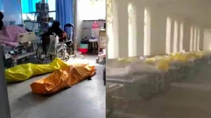 Fakta Tentang Video Viral Pasien Corona Dikremasi Hidup-hidup