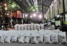Pemerintah Indonesia Tawarkan Investasi Pabrik Gula Ke India.