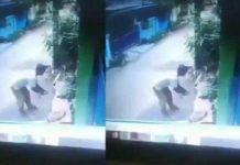 Viral, Aksi Keji Pria Bunuh Seekor Kucing di Bekasi.