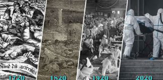 Fakta Sejarah, Wabah Penyakit Muncul Setiap 100 Tahun Sekali.