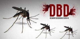 Kasus DBD Jabar, Tertinggi di Kabupaten Bekasi.