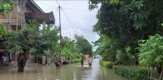 BNPB: Banjir Rob Rendam 187 Rumah Warga di Tegal.