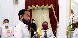 Presiden Jokowi Minta Jatim, Sulsel & Kalsel Diberi Perhatian Khusus.