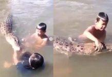 Viral, Aksi Bocah Asyik Bermain Bersama Buaya di Sungai.