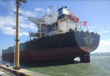 Kapal Curah Raksasa MV Great Glen Sandar di Terminal Teluk Lamong.
