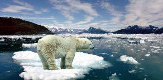 Es Kutub Utara Diprediksi Hilang pada 2035.