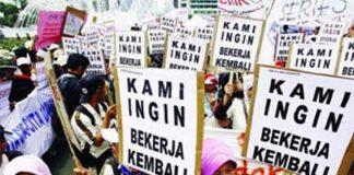 Dampak Resesi Indonesia 5 Juta Orang Jadi Pengangguran.