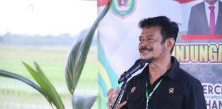Menteri Pertanian Syahrul Yasin Limpo (SYL).