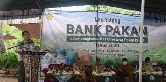 Kementan Luncurkan Bank Pakan Dukung Swasembada Protein Hewani.