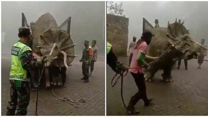 Viral, Video Dinosaurus Triceratops Diturunkan dari Truk di Magetan.